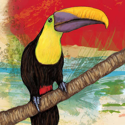 Rainforest Bird - Keel Billed Toucan Stylised Pop Art Drawing Potrait Poser Poster by Kim Wang