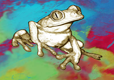 Rainforest Frog Stylised Pop Art Drawing Portrait Poster Poster