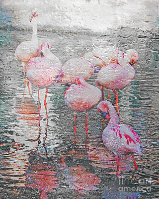 Rainy Day Flamingos Poster