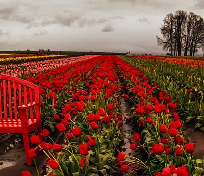 Rainy Day Tulips Poster by Nancy Marie Ricketts
