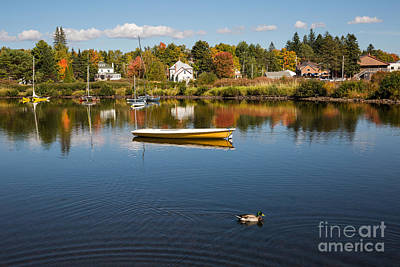 Rangely Lake In Fall Poster by Brenda Giasson