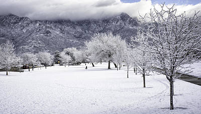 Rare Snowfall Poster