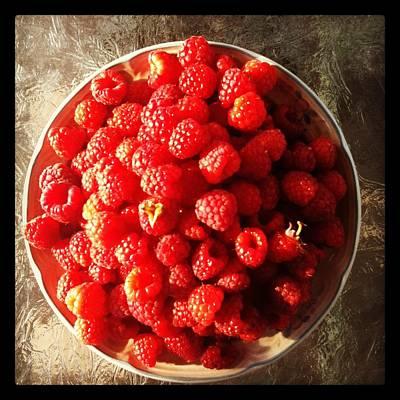 Raspberries Poster by Izabela Bienko