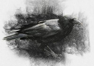 Raven Poster by Taylan Apukovska