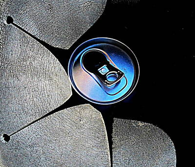 Recycled Can In A Recycle Bin Poster