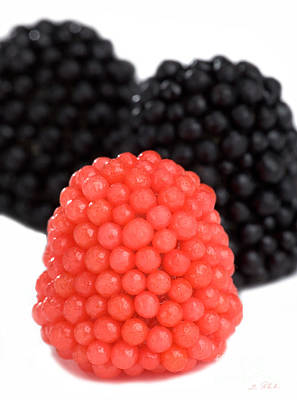 Red And Black Gummy Raspberries Poster