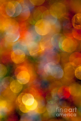 Red And Gold Bokeh Poster by Jan Bickerton