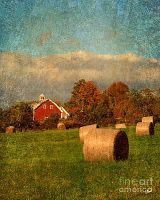 Red Barn  Poster by Alana Ranney
