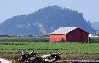 Poster featuring the photograph Red Barn by Erin Kohlenberg