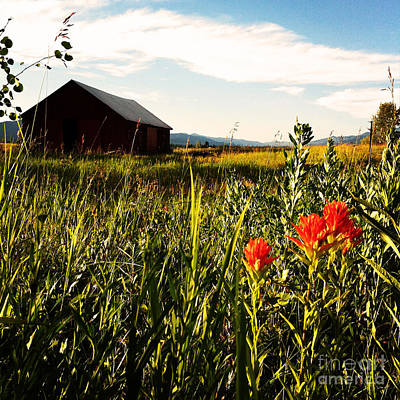 Poster featuring the photograph Red Barn by Meghan at FireBonnet Art