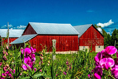 Red Barn On Riggsville Road Poster by Bill Gallagher