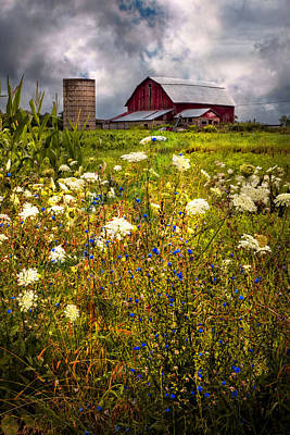 Red Barns In The Wildflowers Poster by Debra and Dave Vanderlaan
