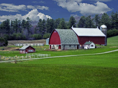 Red Barns Poster by Judy  Johnson