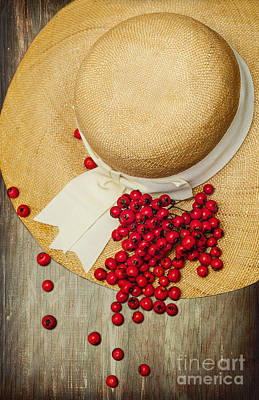 Red Berries Poster by Svetlana Sewell