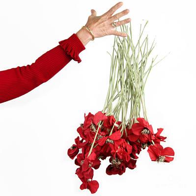 Red Bouquet Poster by Bernard Jaubert
