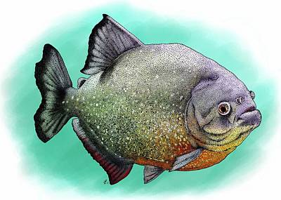 Red Breasted Piranha Poster