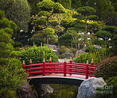 Red Bridge In Japanese Garden Poster