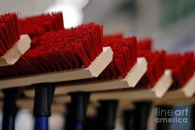 Red Bristled Push Brooms Poster