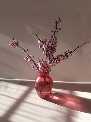 Red Bud And Rose Glass Poster