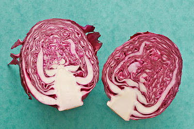Red Cabbage Poster