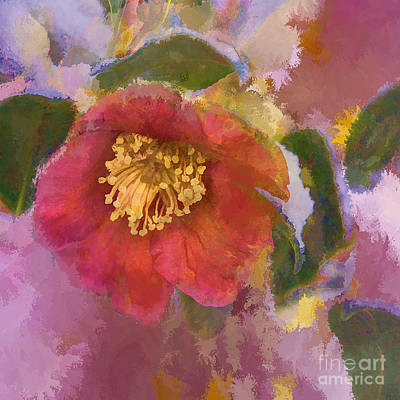 Red Camelia In A Winter Coat Poster by Terry Rowe
