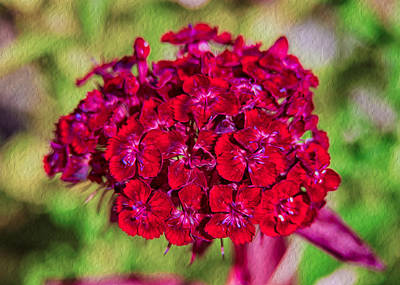 Red Carnations Poster
