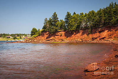 Red Cliffs Of Prince Edward Island Poster by Elena Elisseeva