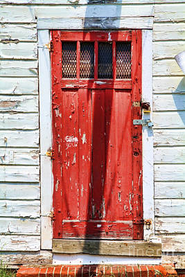 Red Door By Diana Sainz Poster by Diana Sainz