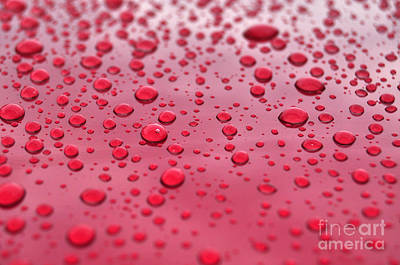 Red Droplets Poster