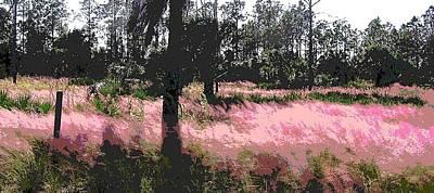 Red Fire Grass Field Gulf Coast Florida Poster