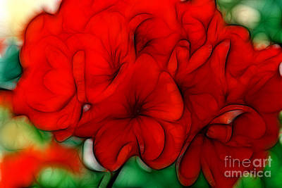 Red Geranium Poster by Jayne Carney