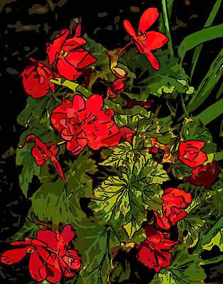 Red Geranium Line Art Poster by Steve Harrington