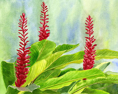 Red Ginger Flowers With Background Poster by Sharon Freeman