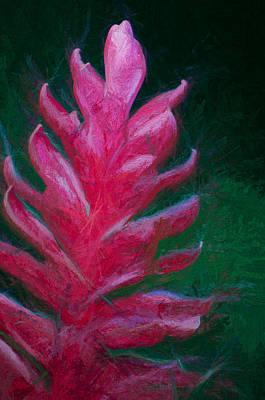 Red Ginger Poster by John K Woodruff