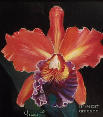 Red Hawaiian Orchid Poster