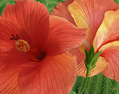 Poster featuring the photograph Red Hibiscus by Ben and Raisa Gertsberg