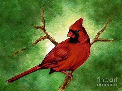 Poster featuring the painting Red Male Cardinal by Nan Wright