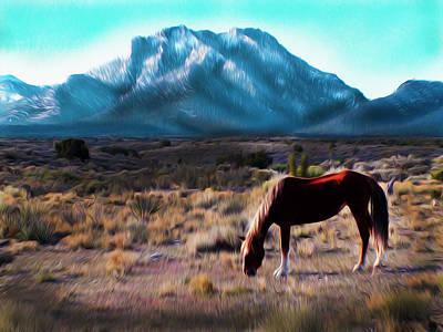 Red Mustang Poster by Brenda Harrah