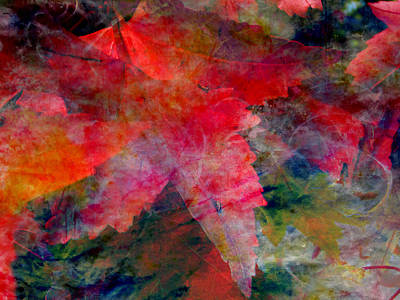 Poster featuring the painting Red Nature Abstract Autumn Leaf by John Fish
