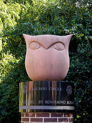 Red Owl At Temple Poster