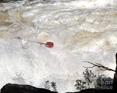 Poster featuring the photograph Red Paddle by Carol Lynn Coronios