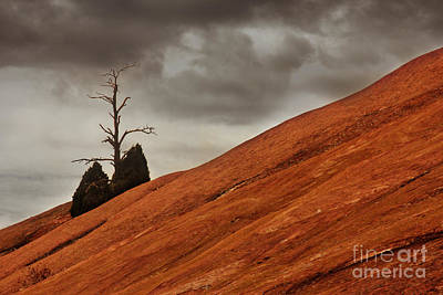 Poster featuring the photograph Red Rock by Dana DiPasquale