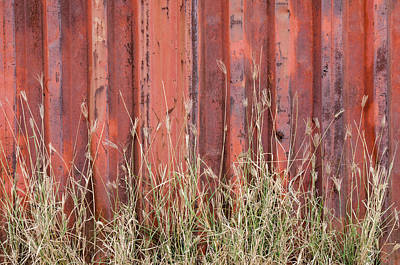 Red Rusty Wall And Grasses. Poster
