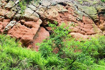 Red Sandstone Bluffs On The River Eden Poster