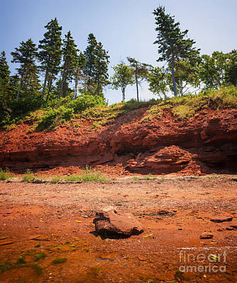 Red Shore Of Prince Edward Island Poster by Elena Elisseeva