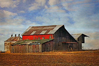 Red Side Barn Poster by Marty Koch
