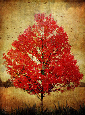 Red Tree Poster by Margaret Hormann Bfa