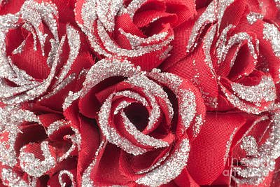 Poster featuring the photograph Red Valentines Day Roses by Gunter Nezhoda