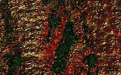 Poster featuring the digital art Red052613 by Matt Lindley