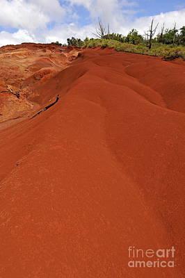 Reddish Sand At Waimea Canyon Poster by Sami Sarkis